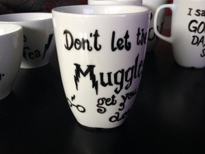 Don't let the Muggles get you down!